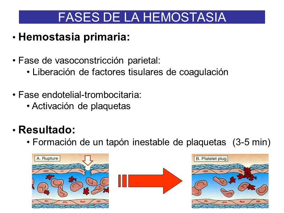 6 FASES DE LA HEMOSTASIA Hemostasia primaria: Fase de vasoconstricción parietal: Liberación de factores tisulares de coagulación Fase endotelial-tromb
