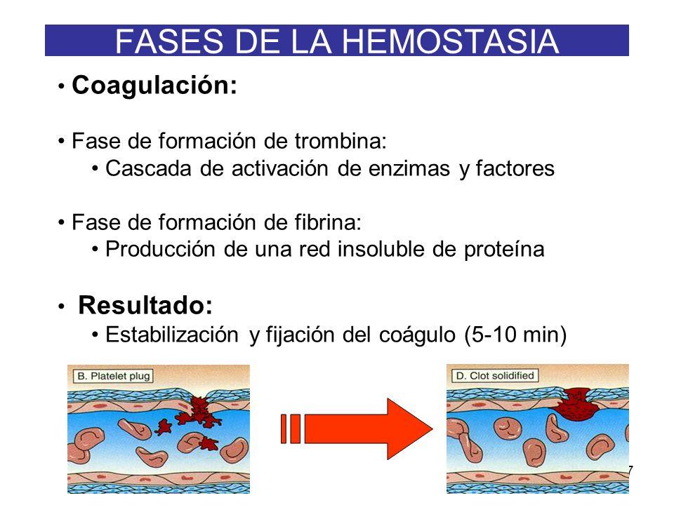 7 Coagulación: Fase de formación de trombina: Cascada de activación de enzimas y factores Fase de formación de fibrina: Producción de una red insolubl