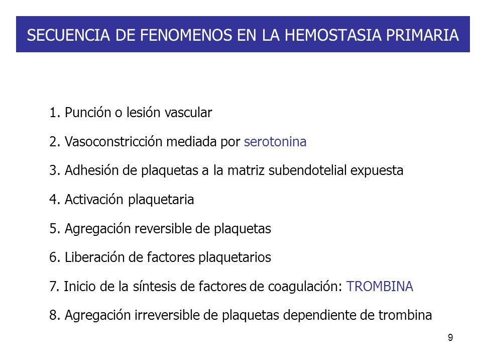 9 SECUENCIA DE FENOMENOS EN LA HEMOSTASIA PRIMARIA 1. Punción o lesión vascular 2. Vasoconstricción mediada por serotonina 3. Adhesión de plaquetas a