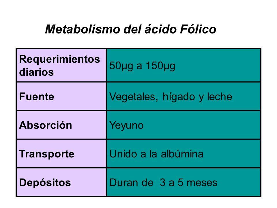 Requerimientos diarios 50µg a 150µg FuenteVegetales, hígado y leche AbsorciónYeyuno TransporteUnido a la albúmina DepósitosDuran de 3 a 5 meses Metabolismo del ácido Fólico