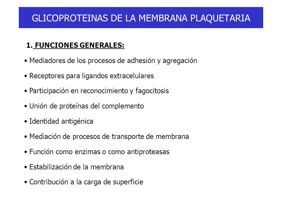 GLICOPROTEINAS DE LA MEMBRANA PLAQUETARIA 1. FUNCIONES GENERALES: Mediadores de los procesos de adhesión y agregación Receptores para ligandos extrace