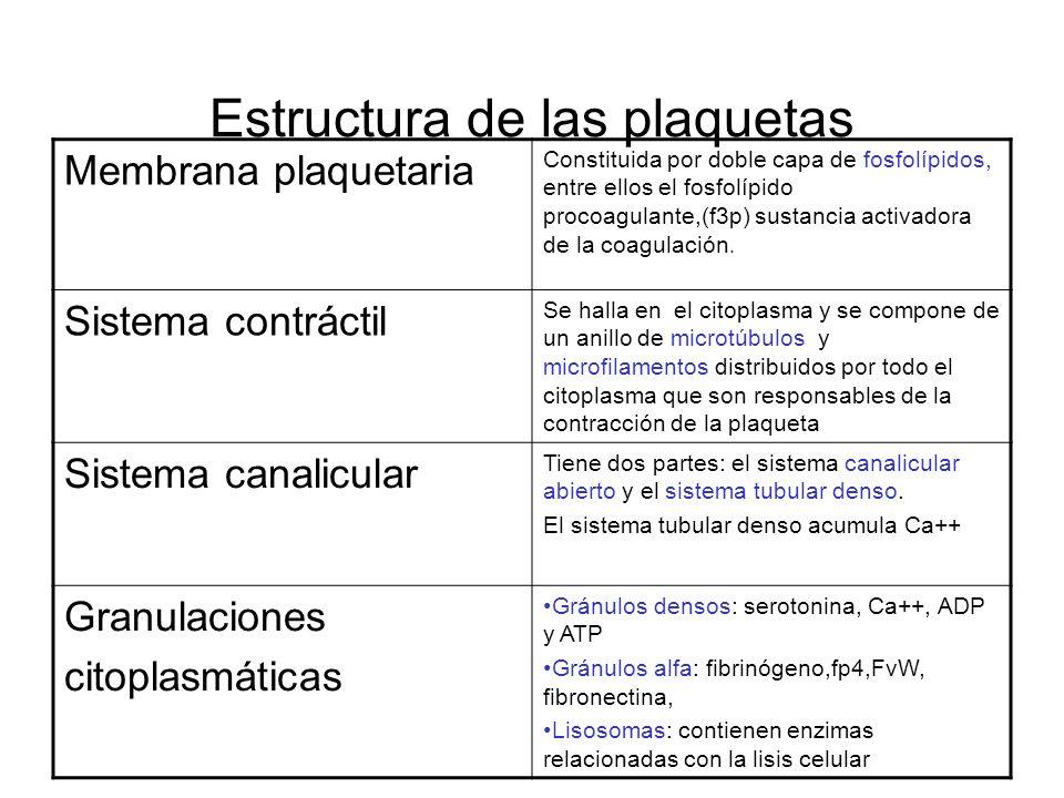 Estructura de las plaquetas Membrana plaquetaria Constituida por doble capa de fosfolípidos, entre ellos el fosfolípido procoagulante,(f3p) sustancia