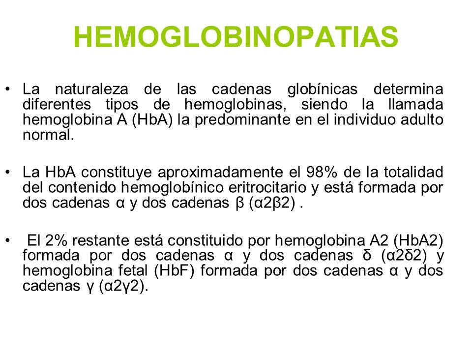 HEMOGLOBINOPATIAS La naturaleza de las cadenas globínicas determina diferentes tipos de hemoglobinas, siendo la llamada hemoglobina A (HbA) la predomi