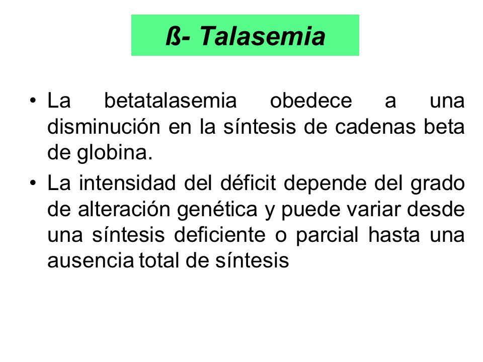 ß- Talasemia La betatalasemia obedece a una disminución en la síntesis de cadenas beta de globina. La intensidad del déficit depende del grado de alte
