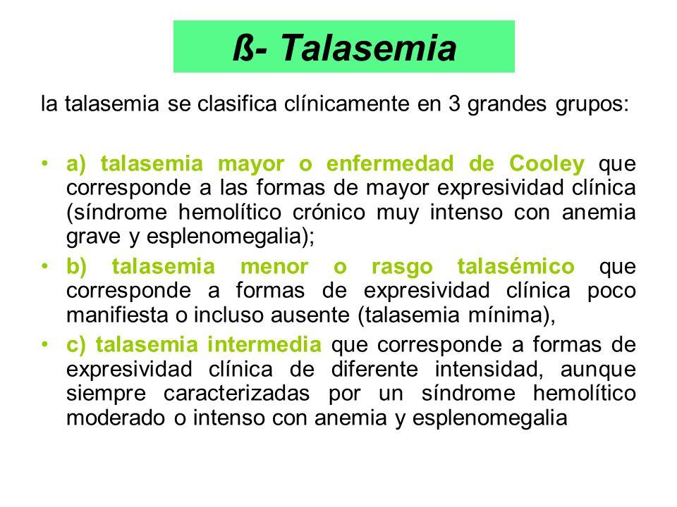 ß- Talasemia la talasemia se clasifica clínicamente en 3 grandes grupos: a) talasemia mayor o enfermedad de Cooley que corresponde a las formas de may