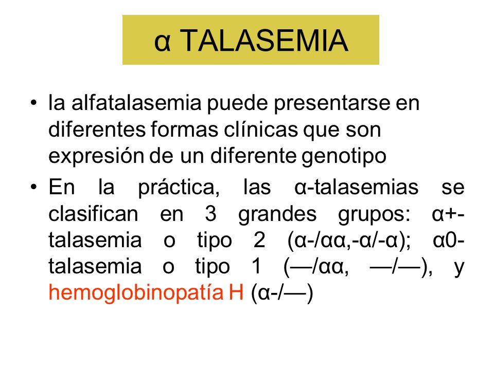 α TALASEMIA la alfatalasemia puede presentarse en diferentes formas clínicas que son expresión de un diferente genotipo En la práctica, las α-talasemi