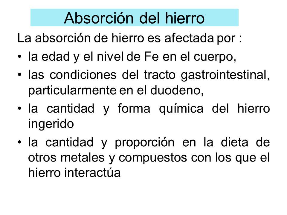 La absorción de hierro es afectada por : la edad y el nivel de Fe en el cuerpo, las condiciones del tracto gastrointestinal, particularmente en el duo
