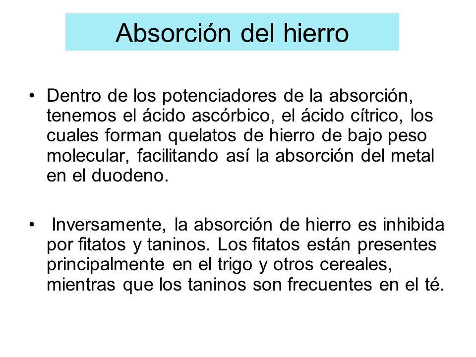 Dentro de los potenciadores de la absorción, tenemos el ácido ascórbico, el ácido cítrico, los cuales forman quelatos de hierro de bajo peso molecular