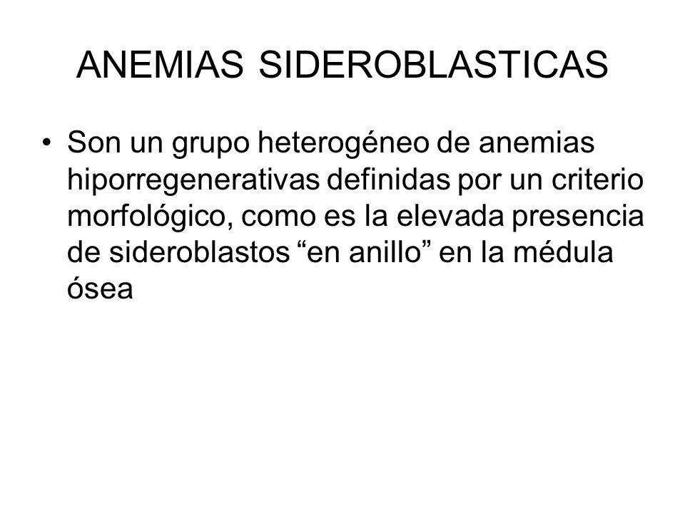 ANEMIAS SIDEROBLASTICAS Son un grupo heterogéneo de anemias hiporregenerativas definidas por un criterio morfológico, como es la elevada presencia de