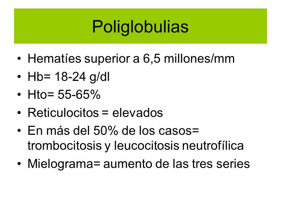 Hematíes superior a 6,5 millones/mm Hb= 18-24 g/dl Hto= 55-65% Reticulocitos = elevados En más del 50% de los casos= trombocitosis y leucocitosis neut