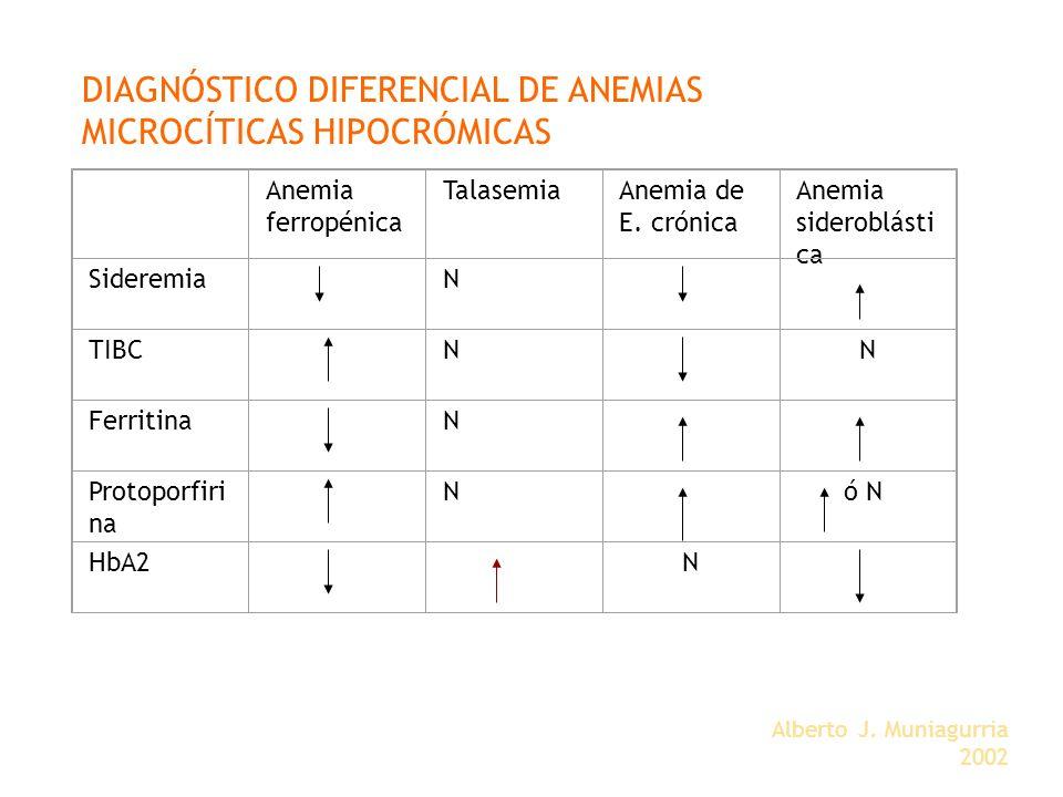 Alberto J. Muniagurria 2002 Anemia ferropénica TalasemiaAnemia de E. crónica Anemia sideroblásti ca SideremiaN TIBCNN FerritinaN Protoporfiri na N ó N