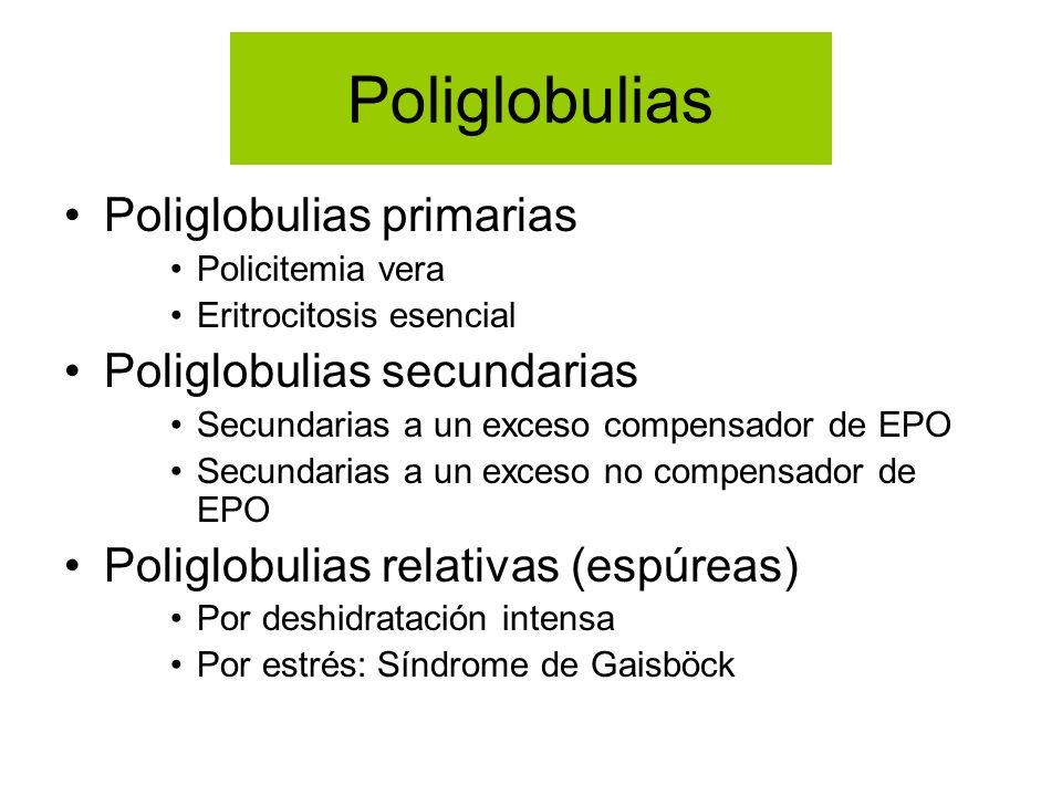 Poliglobulias Poliglobulias primarias Policitemia vera Eritrocitosis esencial Poliglobulias secundarias Secundarias a un exceso compensador de EPO Sec