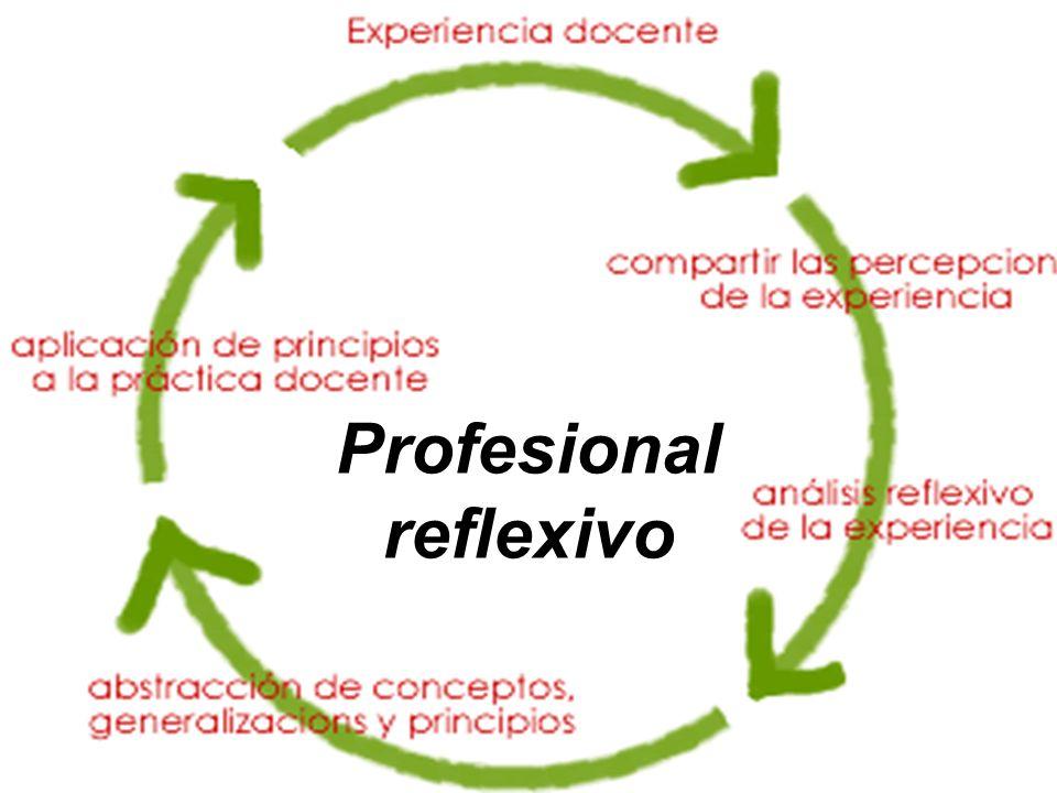 La práctica profesional tiene dos momentos básicos de reflexión: 1.Reflexión en la acción: lo que se piensa y sienta durante la práctica.