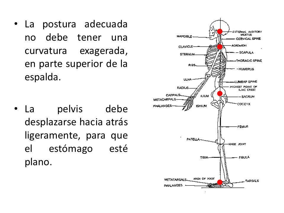 La postura adecuada no debe tener una curvatura exagerada, en parte superior de la espalda. La pelvis debe desplazarse hacia atrás ligeramente, para q