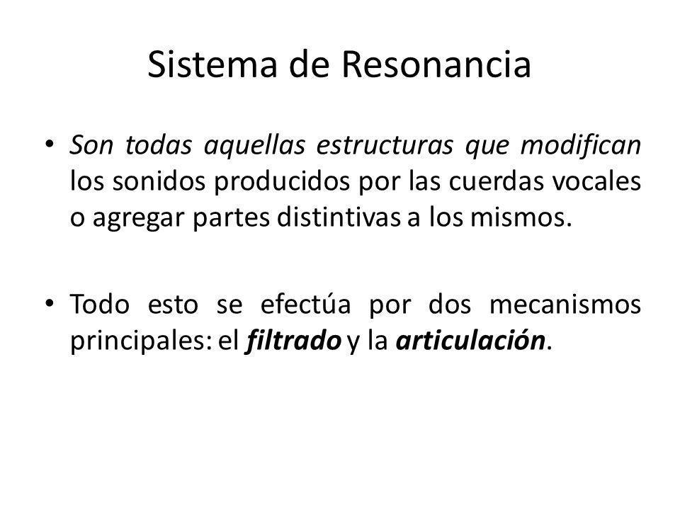 Sistema de Resonancia Son todas aquellas estructuras que modifican los sonidos producidos por las cuerdas vocales o agregar partes distintivas a los m
