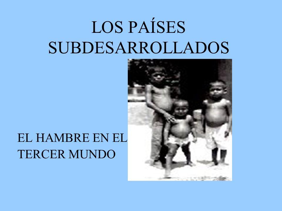 LOS PAÍSES SUBDESARROLLADOS EL HAMBRE EN EL TERCER MUNDO