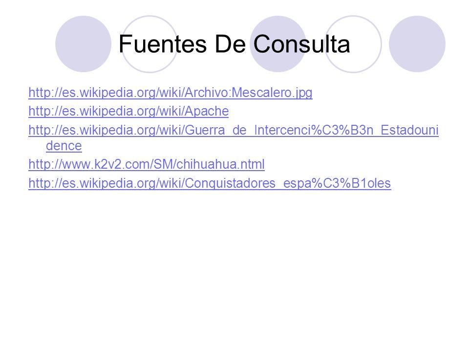 Fuentes De Consulta http://es.wikipedia.org/wiki/Archivo:Mescalero.jpg http://es.wikipedia.org/wiki/Apache http://es.wikipedia.org/wiki/Guerra_de_Inte