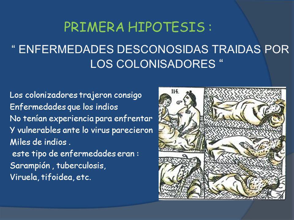 PRIMERA HIPOTESIS : ENFERMEDADES DESCONOSIDAS TRAIDAS POR LOS COLONISADORES Los colonizadores trajeron consigo Enfermedades que los indios No tenían e