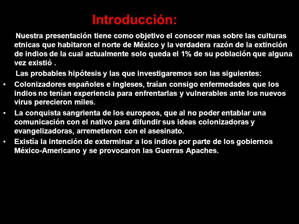Introducción: Nuestra presentación tiene como objetivo el conocer mas sobre las culturas etnicas que habitaron el norte de México y la verdadera razón de la extinción de indios de la cual actualmente solo queda el 1% de su población que alguna vez existió.