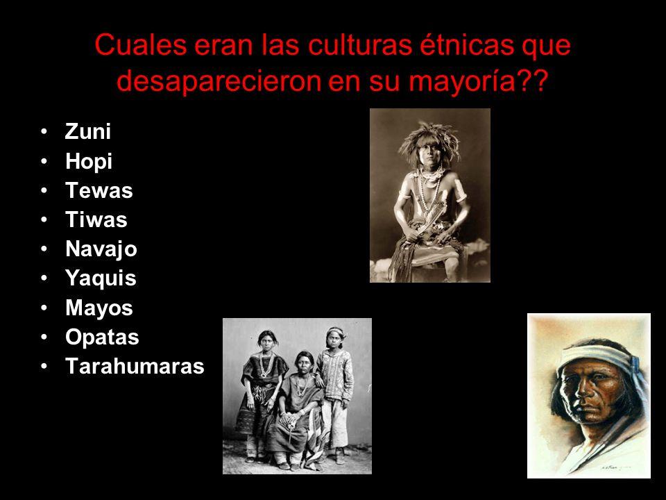 Cuales eran las culturas étnicas que desaparecieron en su mayoría?.