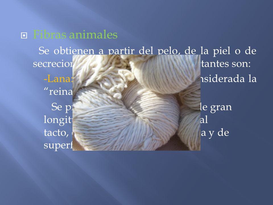 Fibras animales Se obtienen a partir del pelo, de la piel o de secreciones internas. Las más importantes son: -Lana: desde siempre ha sido considerada