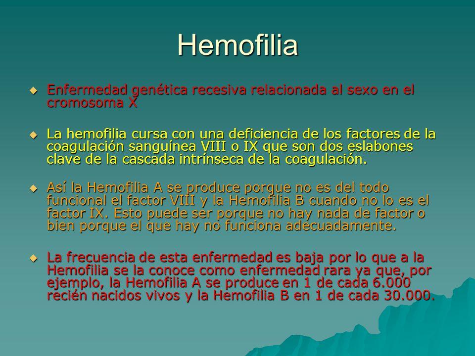 Hemofilia Enfermedad genética recesiva relacionada al sexo en el cromosoma X Enfermedad genética recesiva relacionada al sexo en el cromosoma X La hem