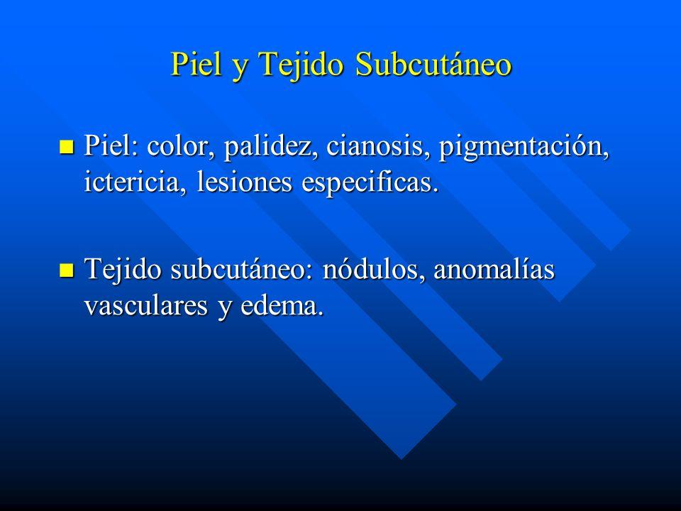 Piel y Tejido Subcutáneo Piel: color, palidez, cianosis, pigmentación, ictericia, lesiones especificas. Piel: color, palidez, cianosis, pigmentación,