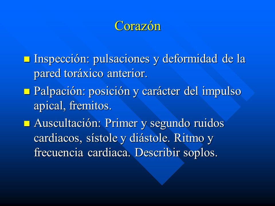 Corazón Inspección: pulsaciones y deformidad de la pared toráxico anterior. Inspección: pulsaciones y deformidad de la pared toráxico anterior. Palpac