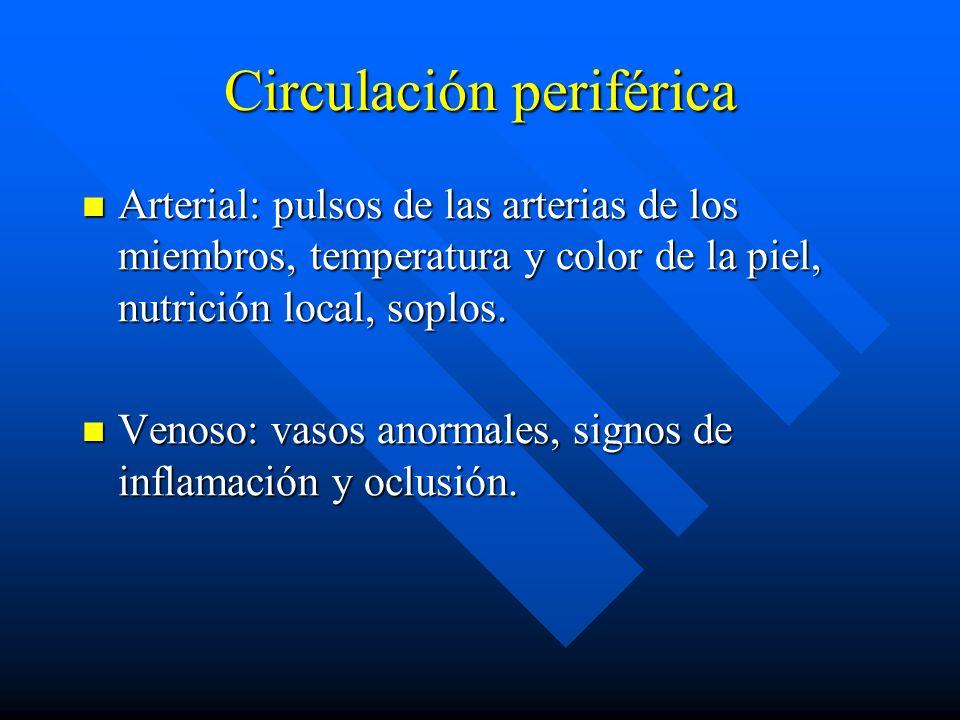 Circulación periférica Arterial: pulsos de las arterias de los miembros, temperatura y color de la piel, nutrición local, soplos. Arterial: pulsos de