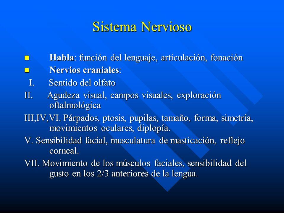 Sistema Nervioso Habla: función del lenguaje, articulación, fonación Habla: función del lenguaje, articulación, fonación Nervios craniales: Nervios cr