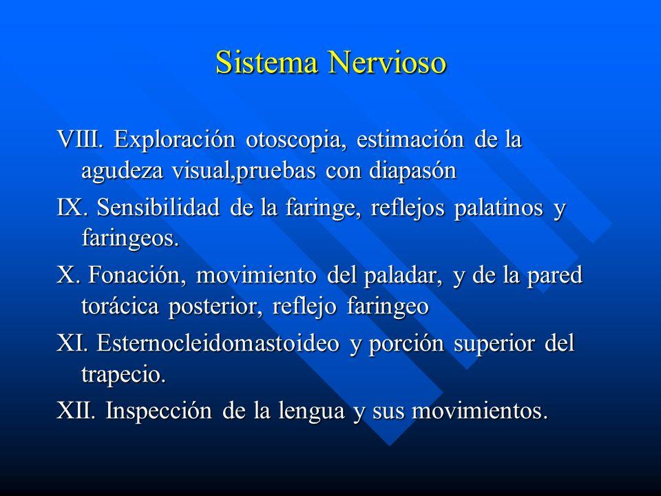 Sistema Nervioso VIII. Exploración otoscopia, estimación de la agudeza visual,pruebas con diapasón IX. Sensibilidad de la faringe, reflejos palatinos