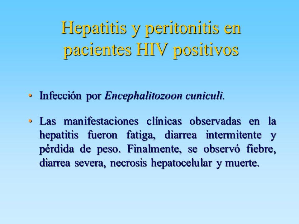 Hepatitis y peritonitis en pacientes HIV positivos Infección por Encephalitozoon cuniculi.Infección por Encephalitozoon cuniculi. Las manifestaciones