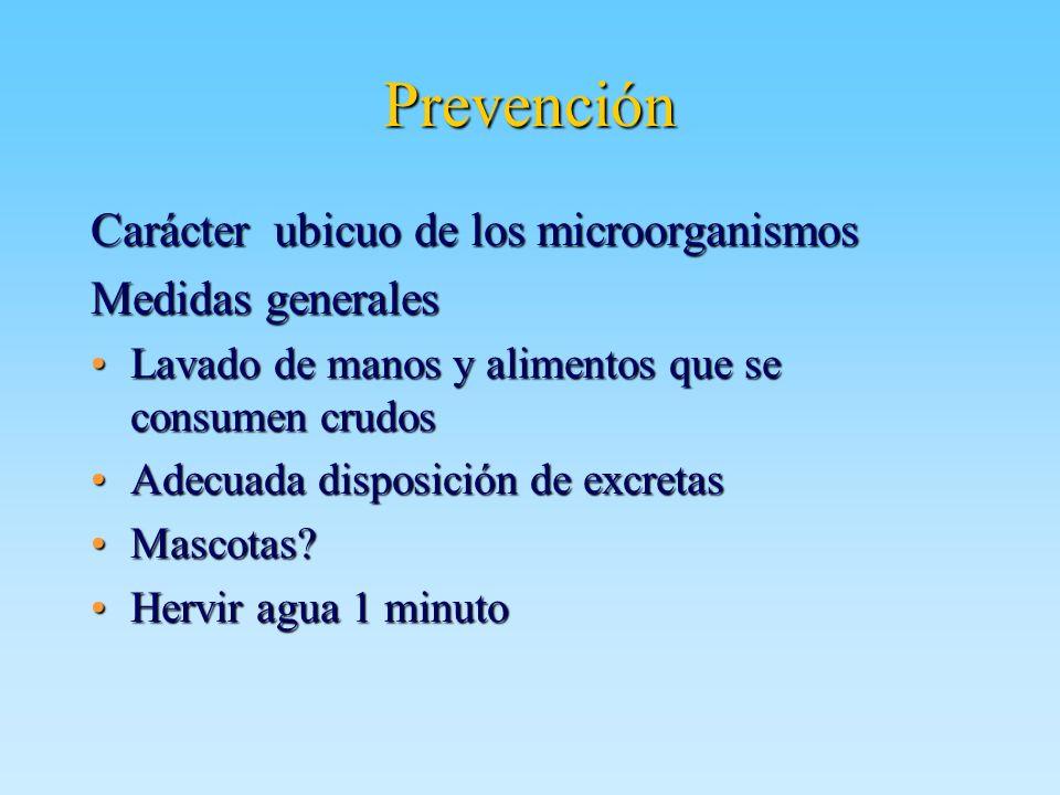 Prevención Carácter ubicuo de los microorganismos Medidas generales Lavado de manos y alimentos que se consumen crudosLavado de manos y alimentos que