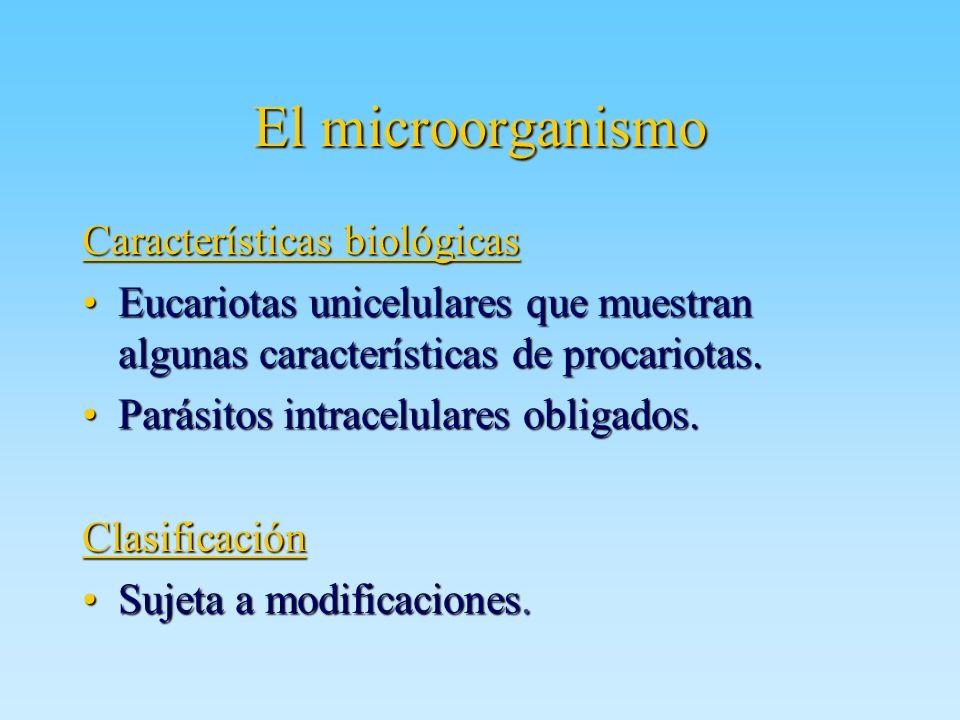 El microorganismo Características biológicas Eucariotas unicelulares que muestran algunas características de procariotas.Eucariotas unicelulares que m