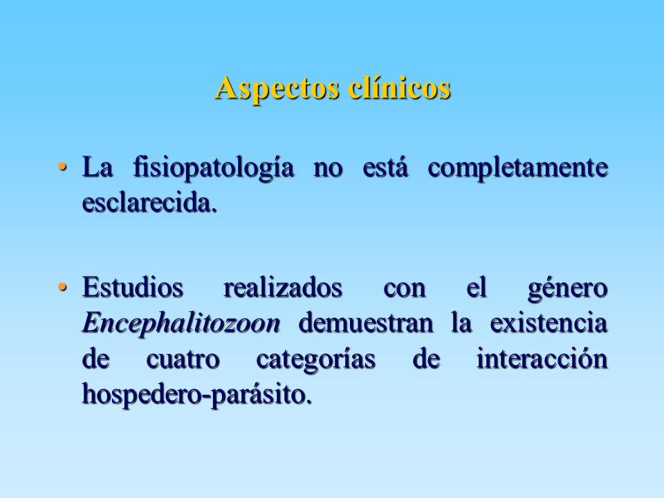 Aspectos clínicos La fisiopatología no está completamente esclarecida.La fisiopatología no está completamente esclarecida. Estudios realizados con el