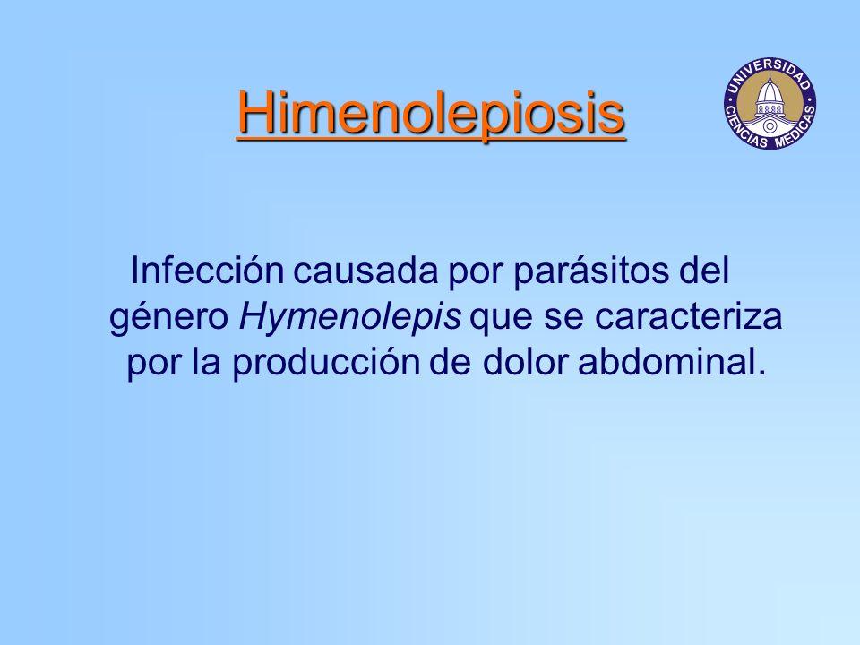 Morfología de los adultos Hymenolepis nana 1 a 3 cm de longitud Escólex con rostelo y ganchos (armado) 4 ventosas Hymenolepis diminuta 10 a 60 cm de largo Escólex con rostelo y desarmado 4 ventosas