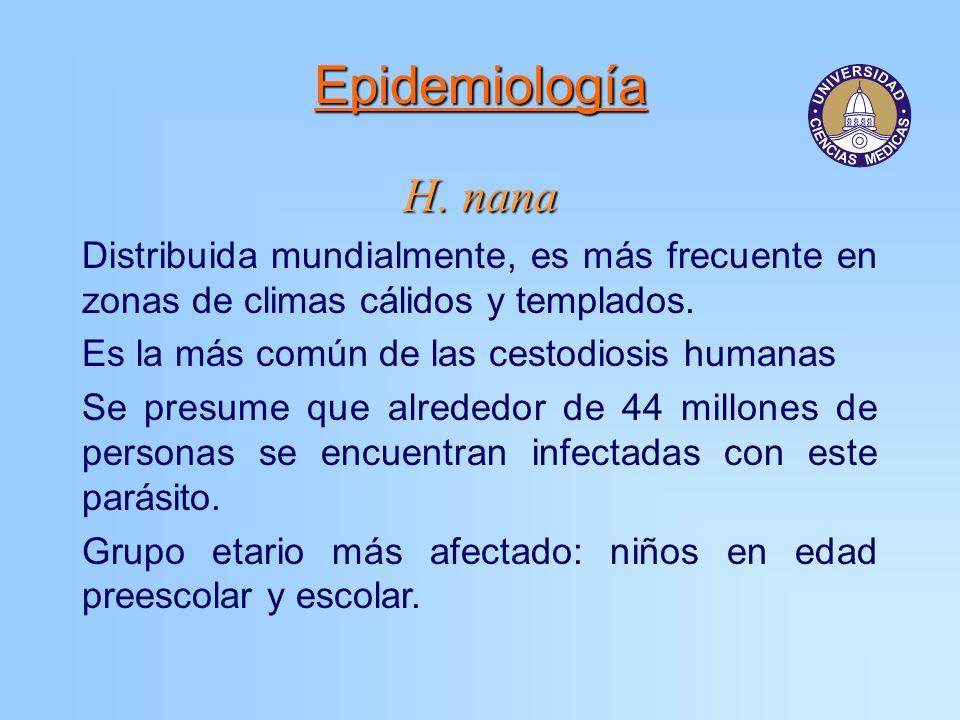Epidemiología H. nana Distribuida mundialmente, es más frecuente en zonas de climas cálidos y templados. Es la más común de las cestodiosis humanas Se
