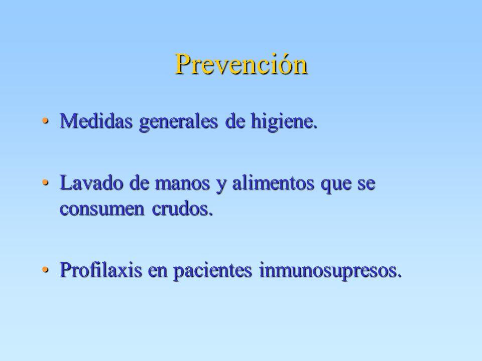 Prevención Medidas generales de higiene.Medidas generales de higiene. Lavado de manos y alimentos que se consumen crudos.Lavado de manos y alimentos q