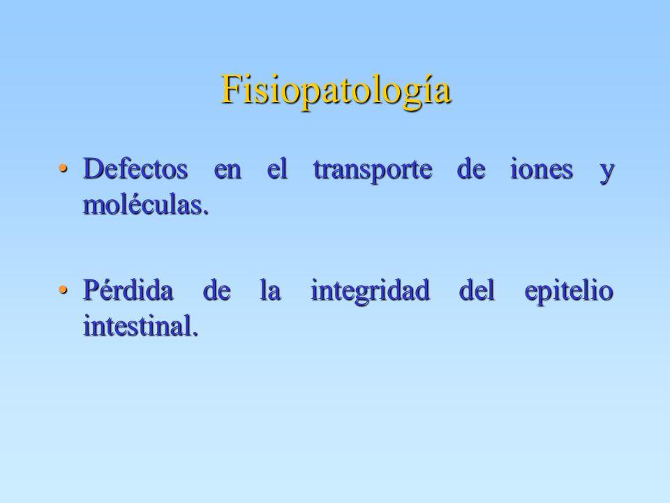 Fisiopatología Defectos en el transporte de iones y moléculas.Defectos en el transporte de iones y moléculas. Pérdida de la integridad del epitelio in