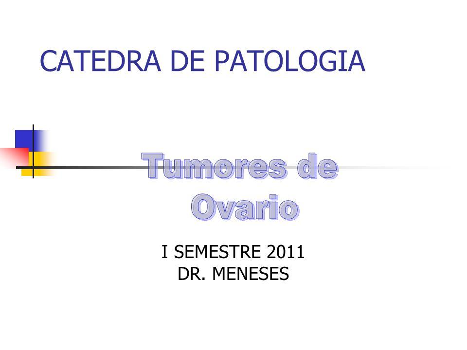 CATEDRA DE PATOLOGIA I SEMESTRE 2011 DR. MENESES