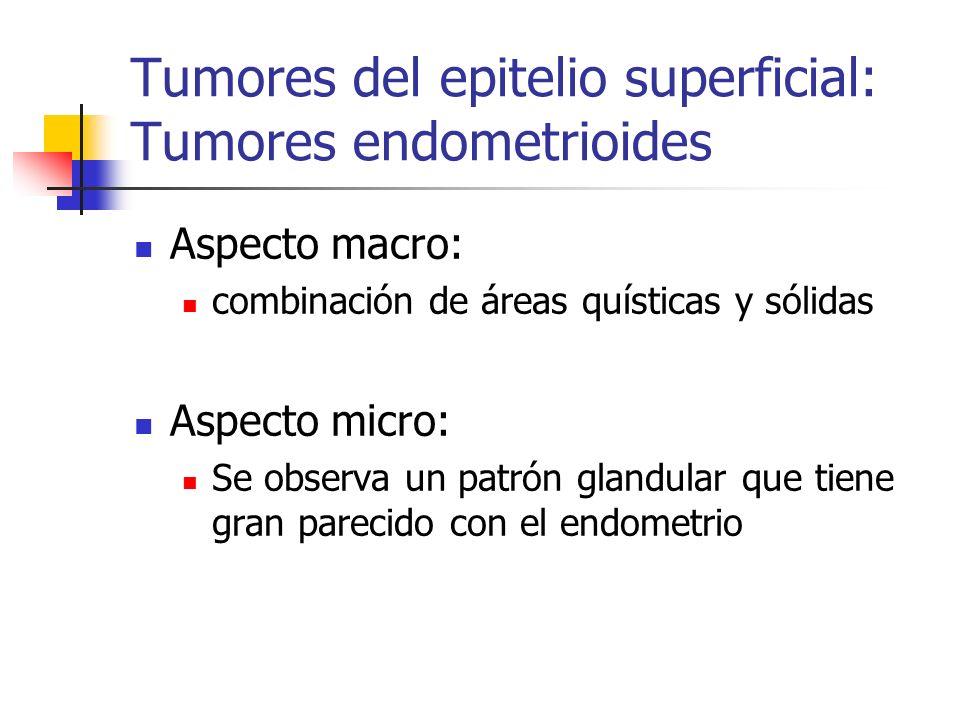 Tumores del epitelio superficial: Tumores endometrioides Aspecto macro: combinación de áreas quísticas y sólidas Aspecto micro: Se observa un patrón g