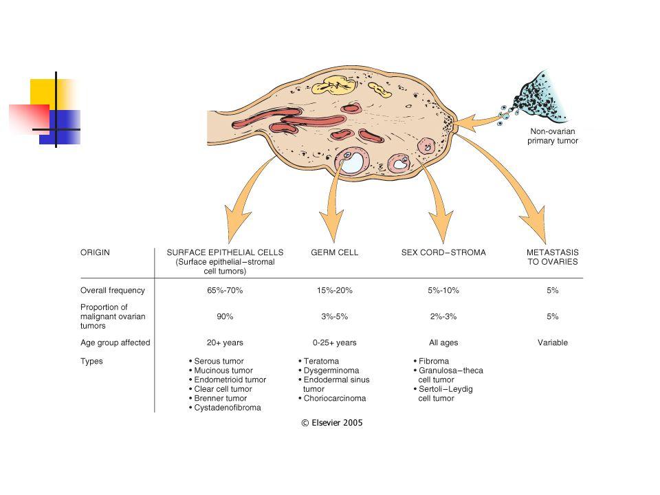 Tumores estromales: tumores de la teca-granulosa 5% de los tumores ováricos 2/3 partes ocurren en posmenopausia Se componen casi exclusivamente de células de la granulosa o una mezcla de éstas con células de la teca