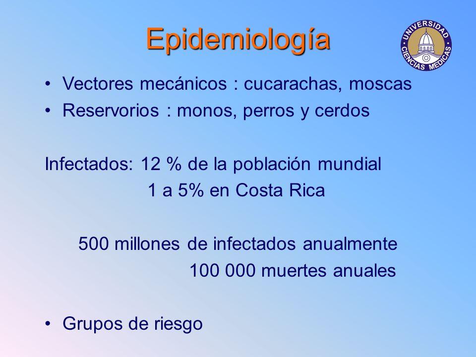 Epidemiología Vectores mecánicos : cucarachas, moscas Reservorios : monos, perros y cerdos Infectados: 12 % de la población mundial 1 a 5% en Costa Ri