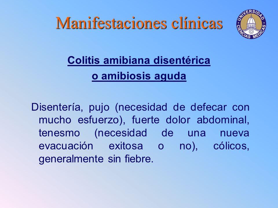 Manifestacionesclínicas Manifestaciones clínicas Colitis amibiana disentérica o amibiosis aguda Disentería, pujo (necesidad de defecar con mucho esfue