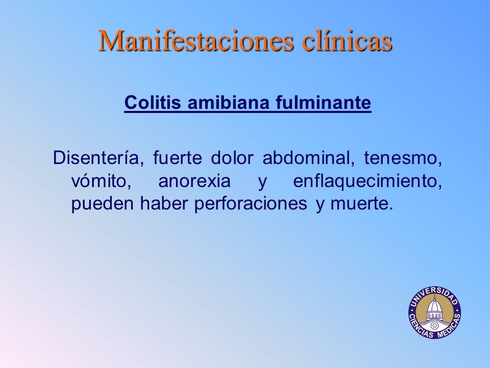 Manifestacionesclínicas Manifestaciones clínicas Colitis amibiana fulminante Disentería, fuerte dolor abdominal, tenesmo, vómito, anorexia y enflaquec