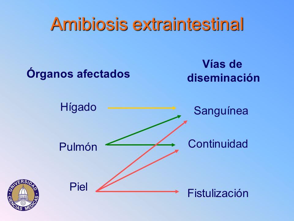 Amibiosisextraintestinal Amibiosis extraintestinal Órganos afectados Hígado Pulmón Piel Vías de diseminación Sanguínea Continuidad Fistulización