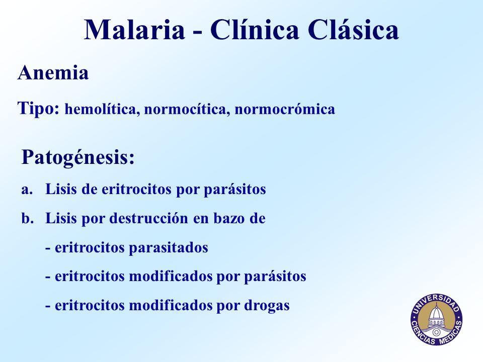 Malaria - Clínica Clásica Anemia Tipo: hemolítica, normocítica, normocrómica Patogénesis: a.Lisis de eritrocitos por parásitos b.Lisis por destrucción