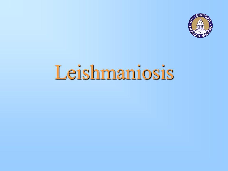 Leishmaniosis Infección causada por parásitos del género Leishmania cuyas patologías en el ser humano varían de acuerdo con la especie de parásito implicada y la condición inmune del hospedero.
