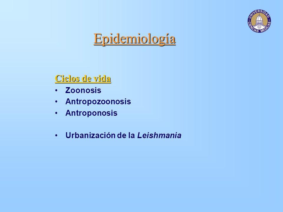 Epidemiología Ciclos de vida Zoonosis Antropozoonosis Antroponosis Urbanización de la Leishmania