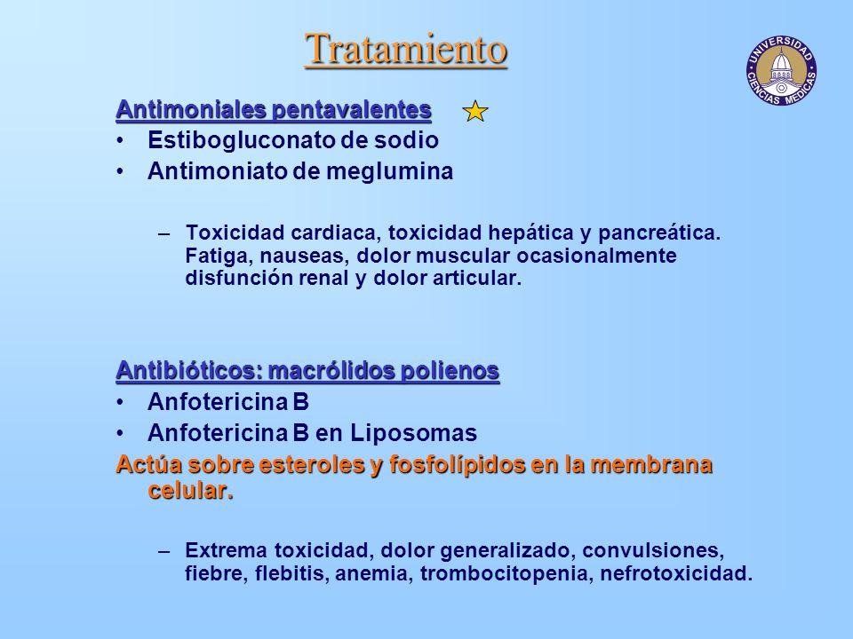 Tratamiento Antimoniales pentavalentes Estibogluconato de sodio Antimoniato de meglumina –Toxicidad cardiaca, toxicidad hepática y pancreática. Fatiga